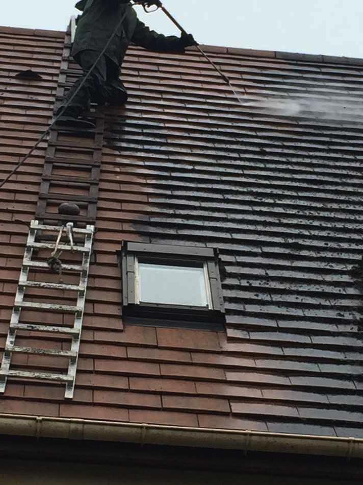 démoussage toiture ardoise