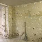 renovation murs goussonville